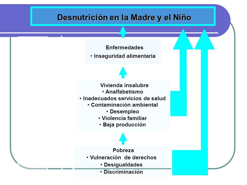 Determinantes Desnutrición en la Madre y el Niño Enfermedades