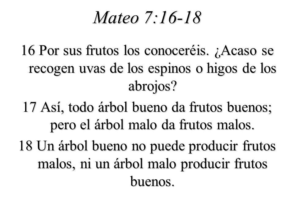 Mateo 7:16-18
