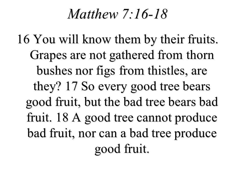 Matthew 7:16-18