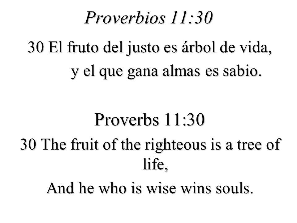 Proverbios 11:30 Proverbs 11:30