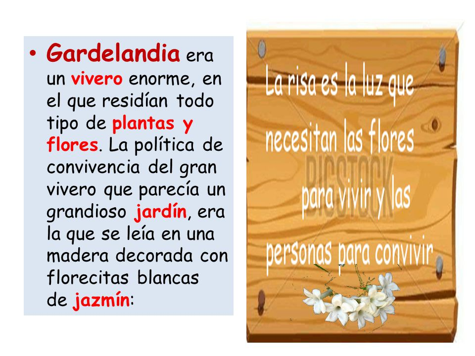 Gardelandia era un vivero enorme, en el que residían todo tipo de plantas y flores.