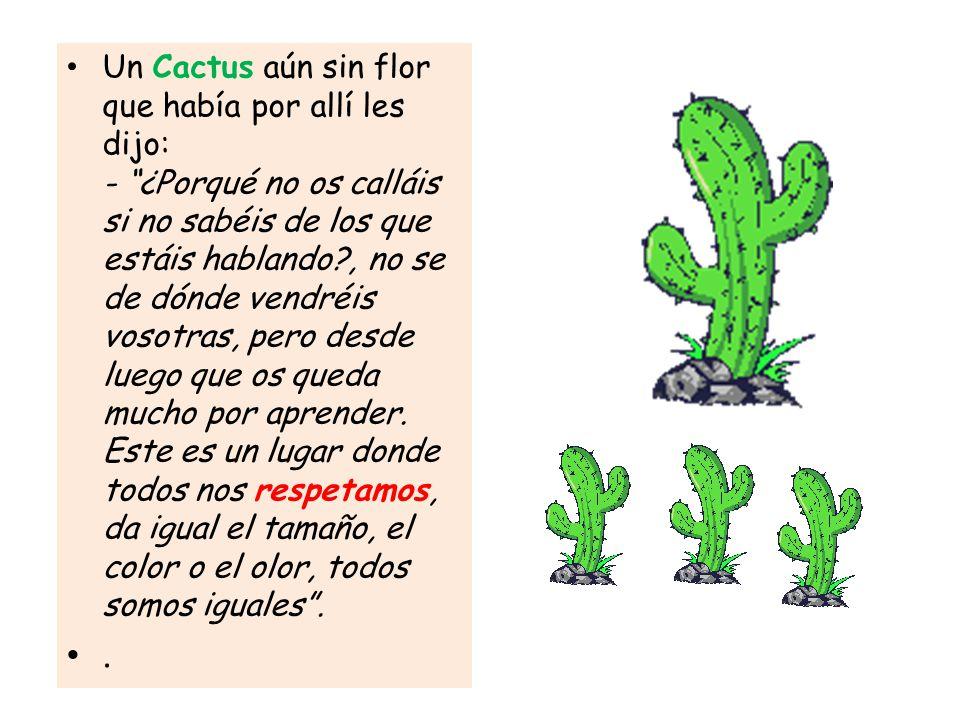 Un Cactus aún sin flor que había por allí les dijo: - ¿Porqué no os calláis si no sabéis de los que estáis hablando , no se de dónde vendréis vosotras, pero desde luego que os queda mucho por aprender. Este es un lugar donde todos nos respetamos, da igual el tamaño, el color o el olor, todos somos iguales .
