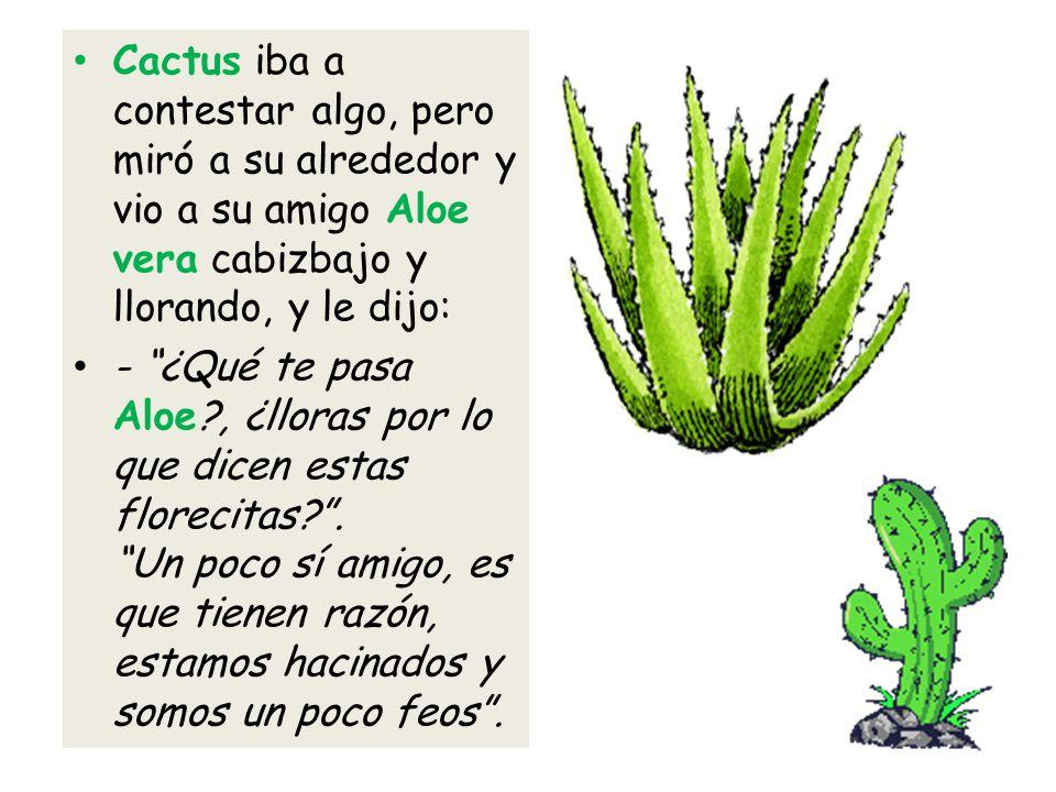 Cactus iba a contestar algo, pero miró a su alrededor y vio a su amigo Aloe vera cabizbajo y llorando, y le dijo: