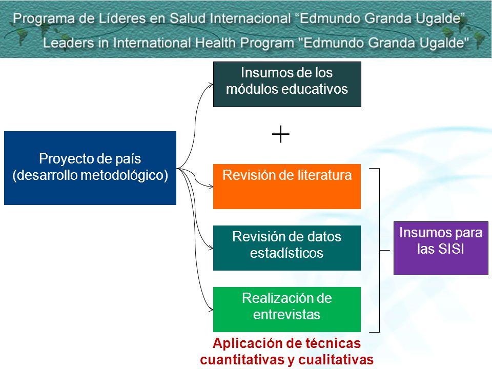 Aplicación de técnicas cuantitativas y cualitativas