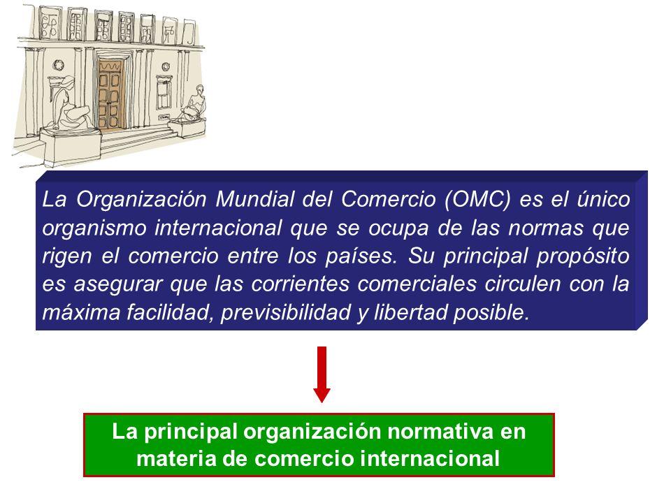 La principal organización normativa en