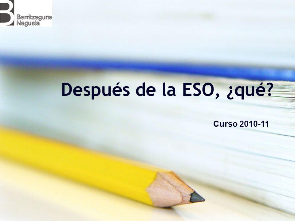 Después de la ESO, ¿qué Curso 2010-11