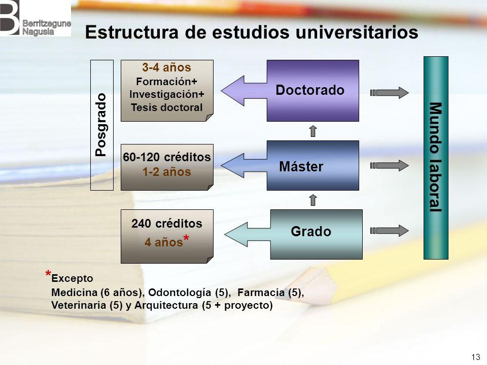 Estructura de estudios universitarios