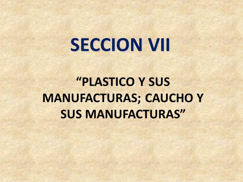 PLASTICO Y SUS MANUFACTURAS; CAUCHO Y SUS MANUFACTURAS