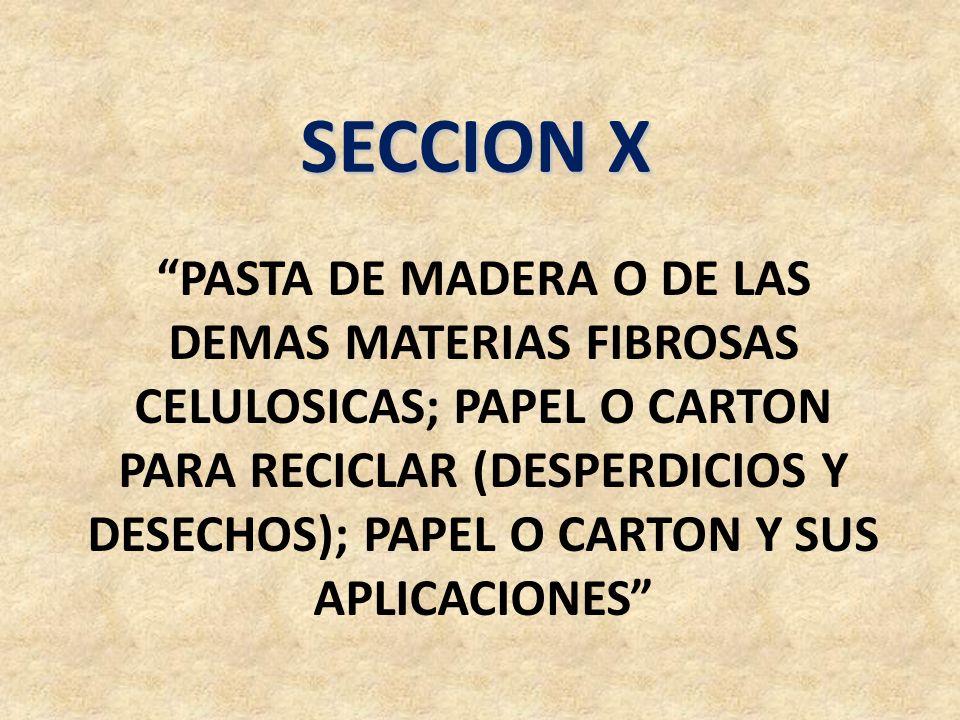 SECCION X