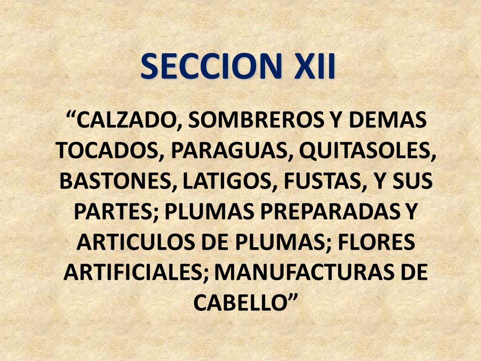 SECCION XII