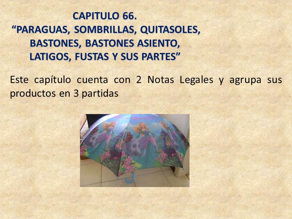 CAPITULO 66. PARAGUAS, SOMBRILLAS, QUITASOLES, BASTONES, BASTONES ASIENTO, LATIGOS, FUSTAS Y SUS PARTES