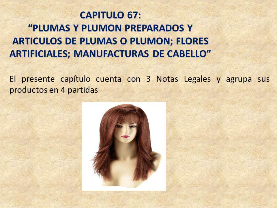 CAPITULO 67: PLUMAS Y PLUMON PREPARADOS Y ARTICULOS DE PLUMAS O PLUMON; FLORES ARTIFICIALES; MANUFACTURAS DE CABELLO