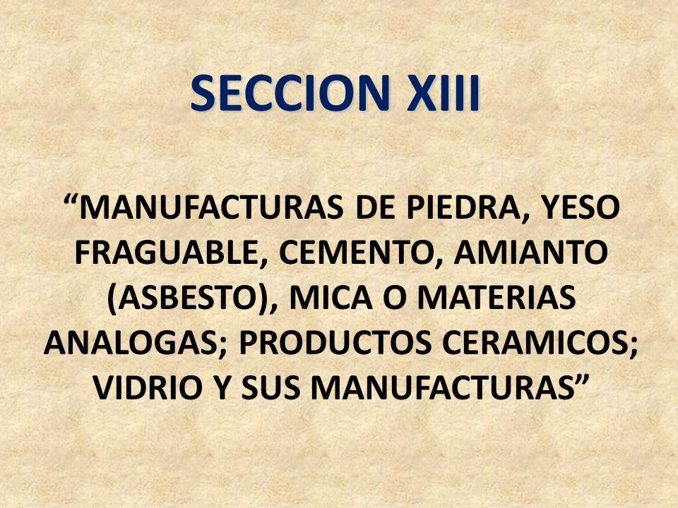 SECCION XIII