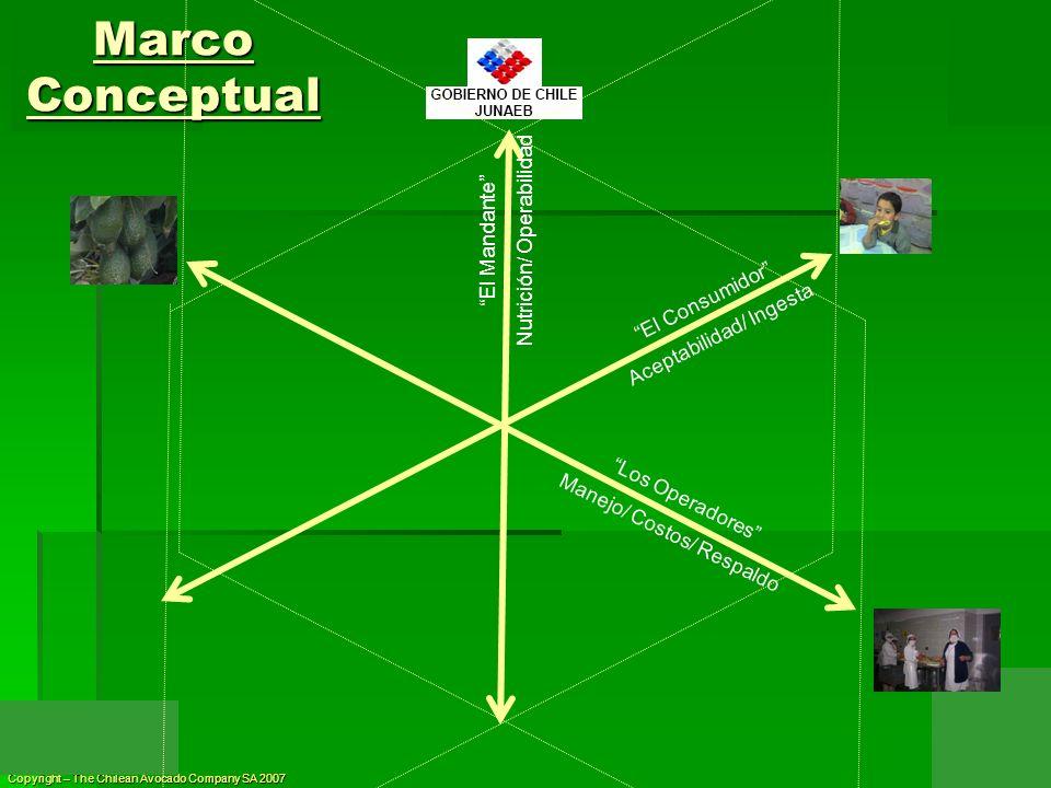 Marco Conceptual Nutrición/ Operabilidad El Mandante El Consumidor