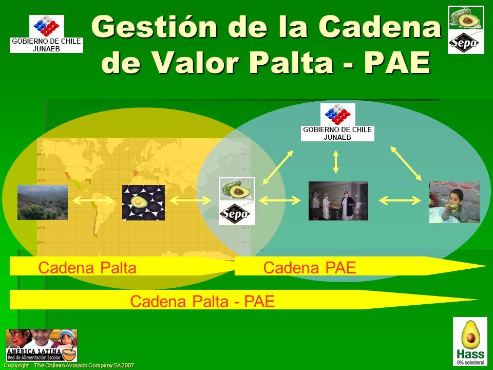 Gestión de la Cadena de Valor Palta - PAE
