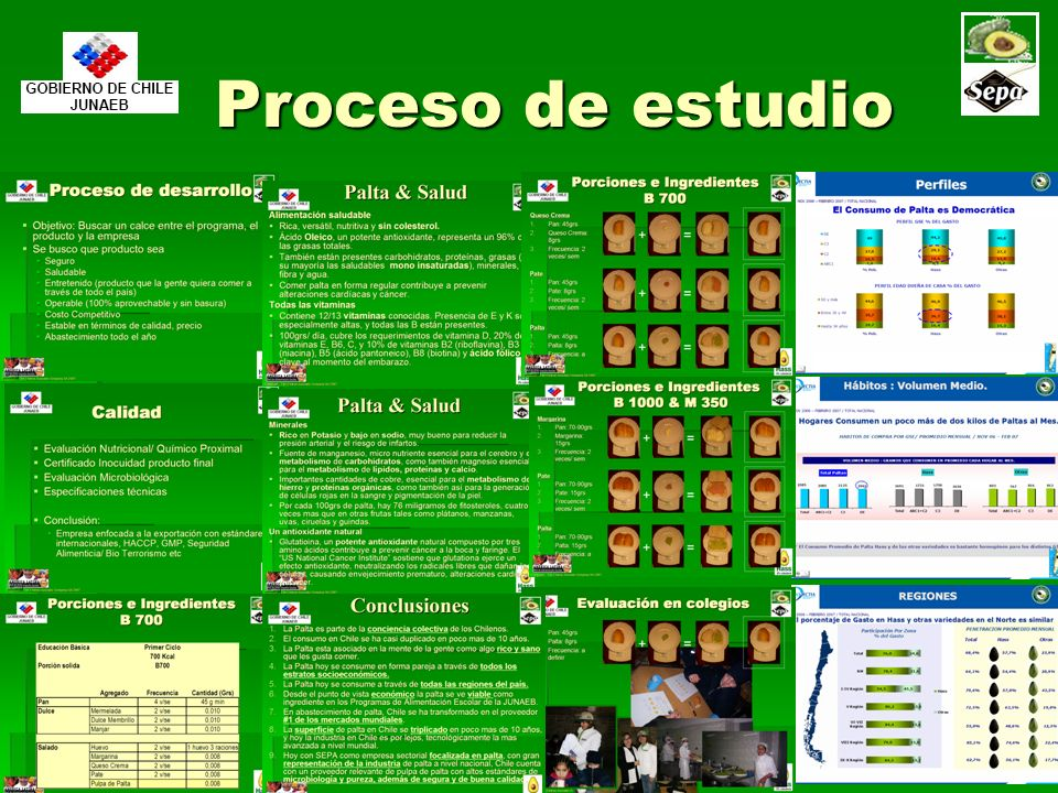 Proceso de estudio Copyright – The Chilean Avocado Company SA 2007