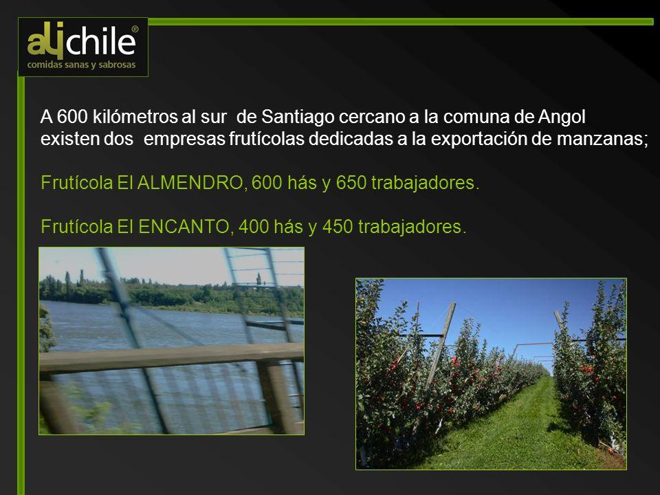 A 600 kilómetros al sur de Santiago cercano a la comuna de Angol