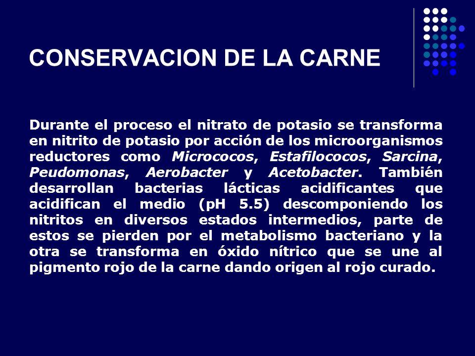 CONSERVACION DE LA CARNE