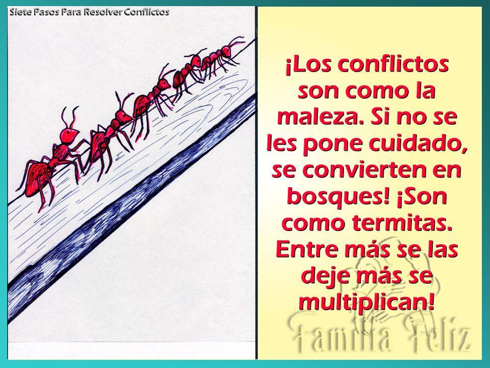 Siete Pasos Para Resolver Conflictos