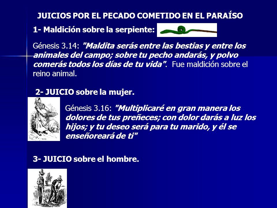 JUICIOS POR EL PECADO COMETIDO EN EL PARAÍSO