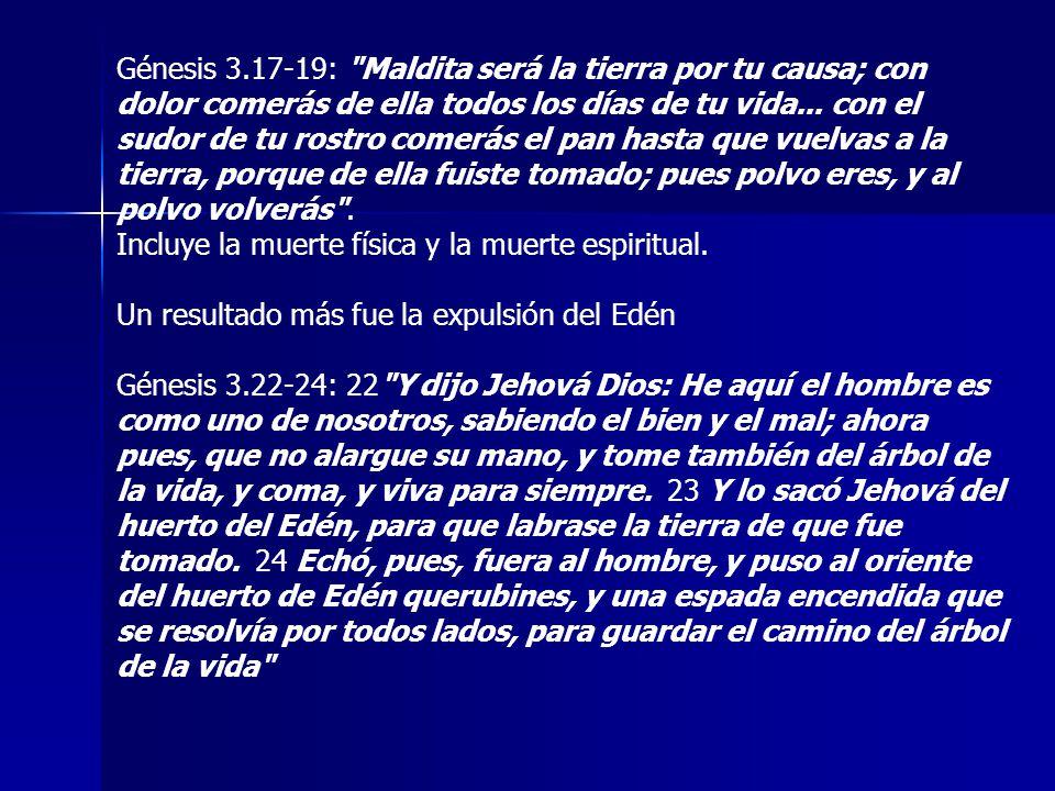 Génesis 3.17-19: Maldita será la tierra por tu causa; con dolor comerás de ella todos los días de tu vida... con el sudor de tu rostro comerás el pan hasta que vuelvas a la tierra, porque de ella fuiste tomado; pues polvo eres, y al polvo volverás .