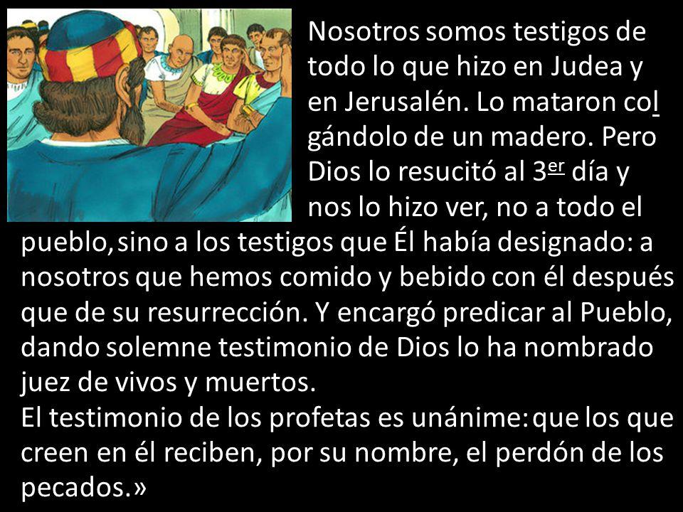 Nosotros somos testigos de todo lo que hizo en Judea y en Jerusalén