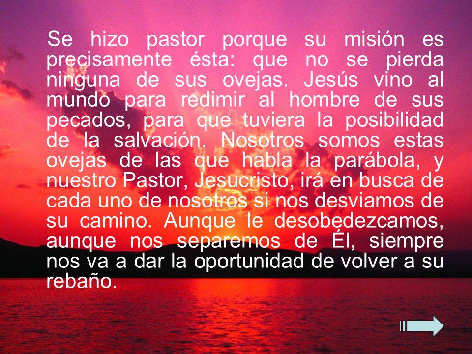 Se hizo pastor porque su misión es precisamente ésta: que no se pierda ninguna de sus ovejas.