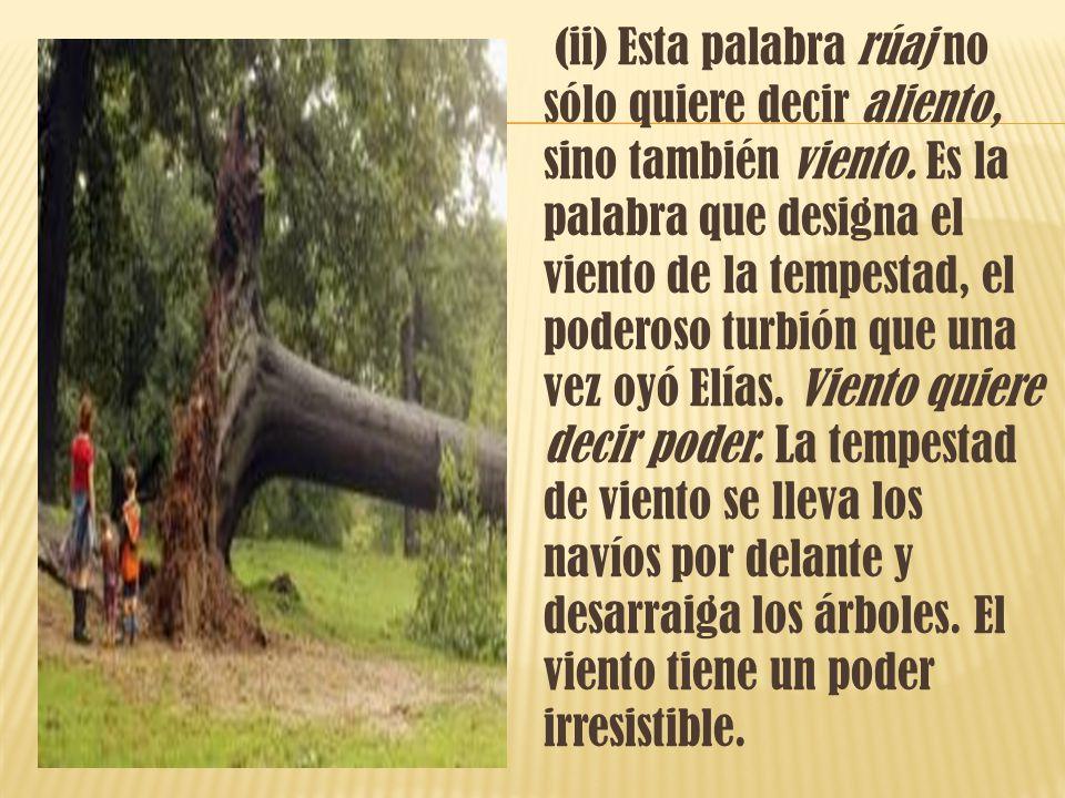 (ii) Esta palabra rúaj no sólo quiere decir aliento, sino también viento.