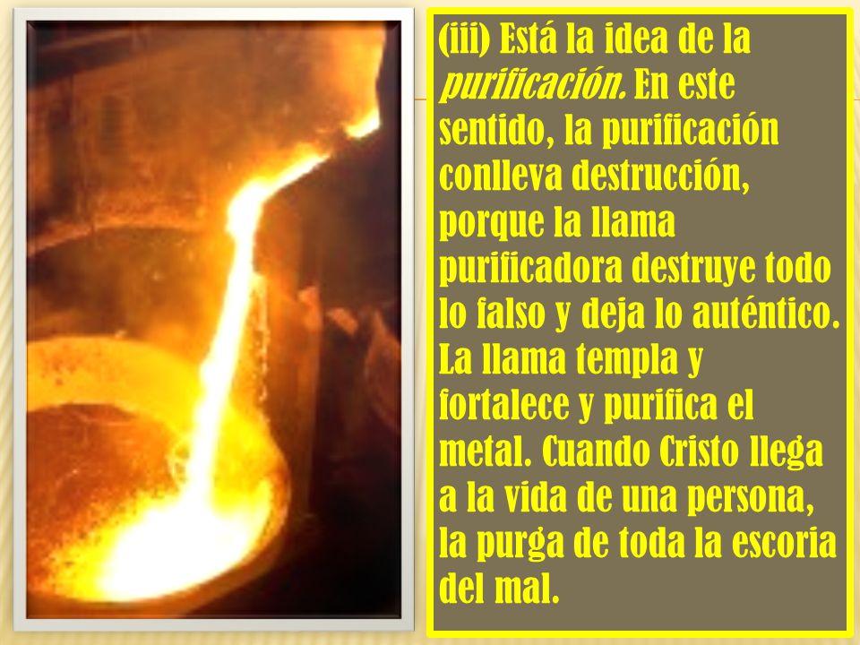 (iii) Está la idea de la purificación