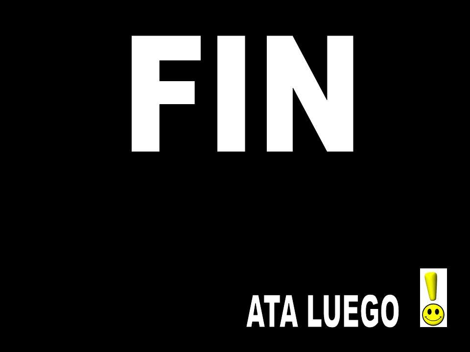 FIN ATA LUEGO