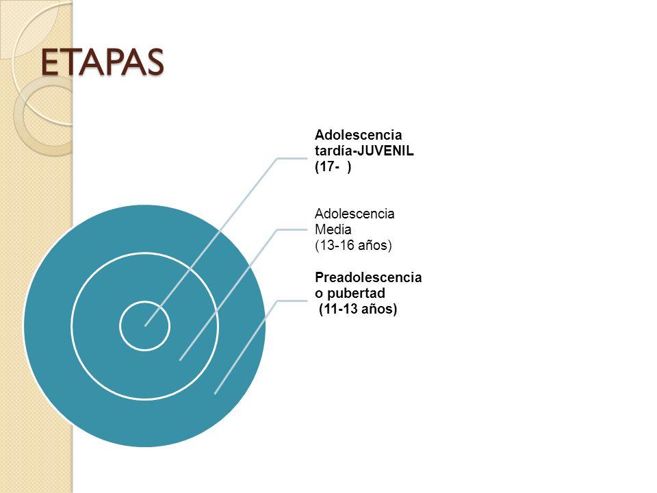 ETAPAS Adolescencia tardía-JUVENIL (17- ) Adolescencia Media