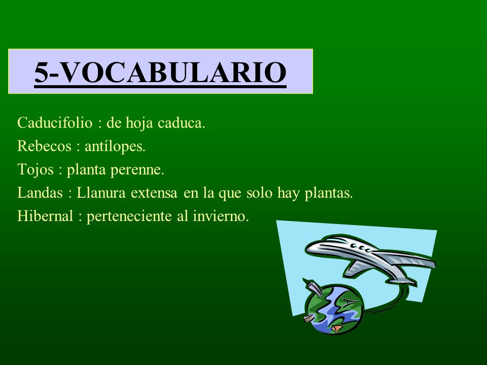5-VOCABULARIO Caducifolio : de hoja caduca. Rebecos : antílopes.