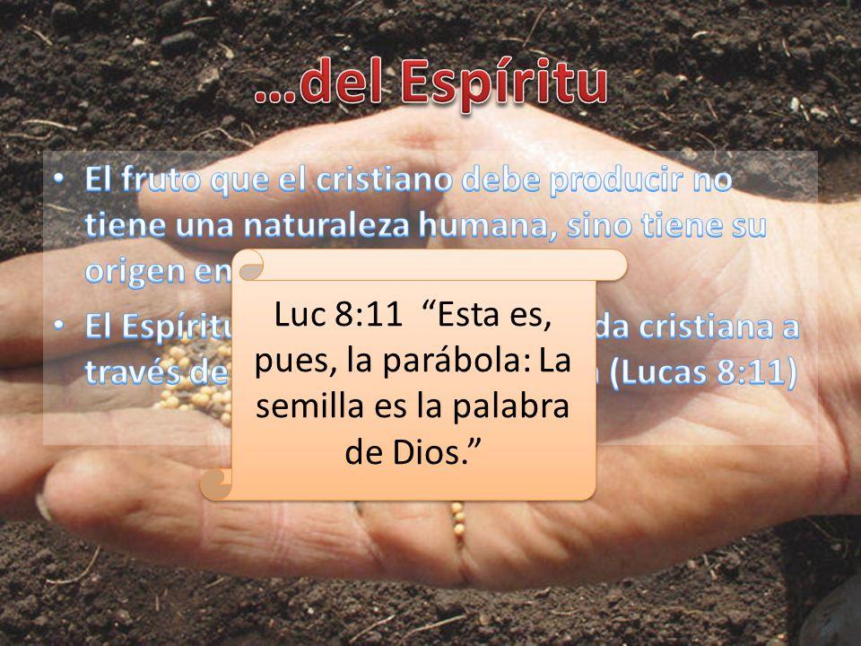 …del Espíritu El fruto que el cristiano debe producir no tiene una naturaleza humana, sino tiene su origen en el Espíritu.