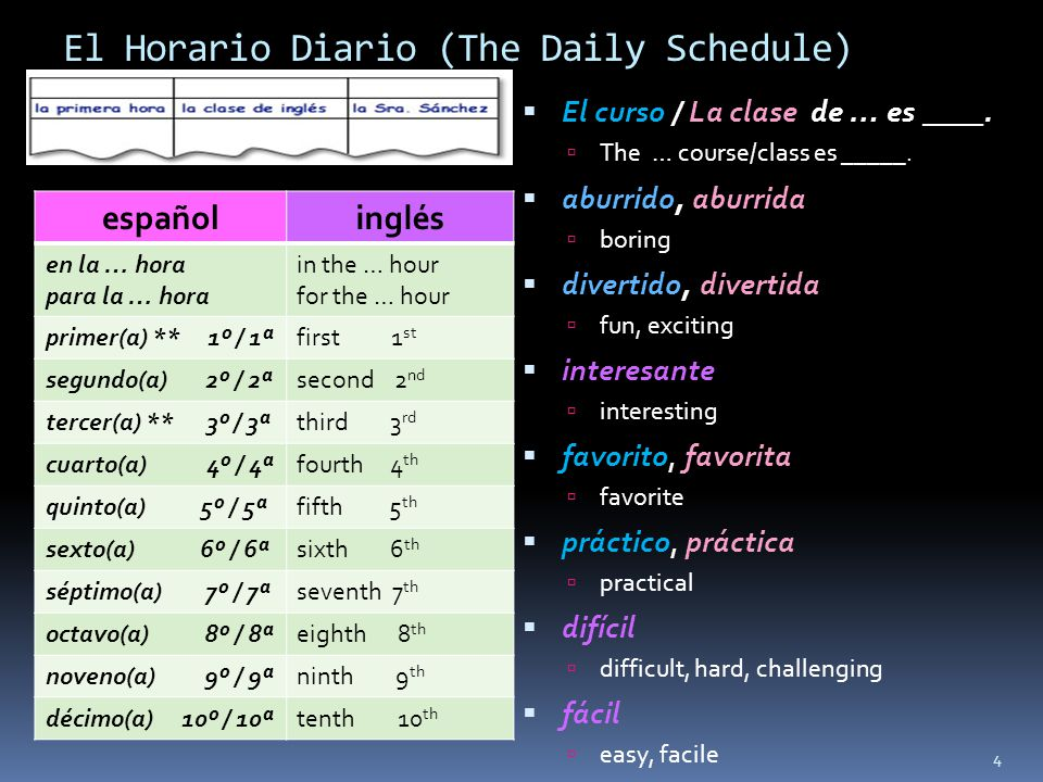 El Horario Diario (The Daily Schedule)