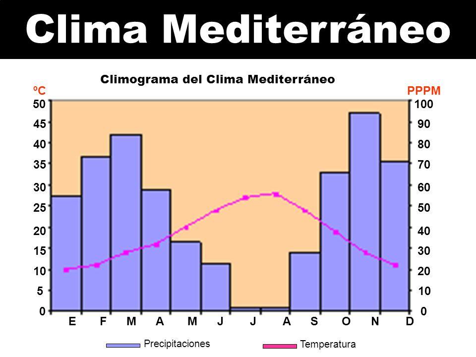 Climograma del Clima Mediterráneo