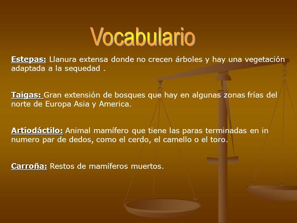 Vocabulario Estepas: Llanura extensa donde no crecen árboles y hay una vegetación adaptada a la sequedad .