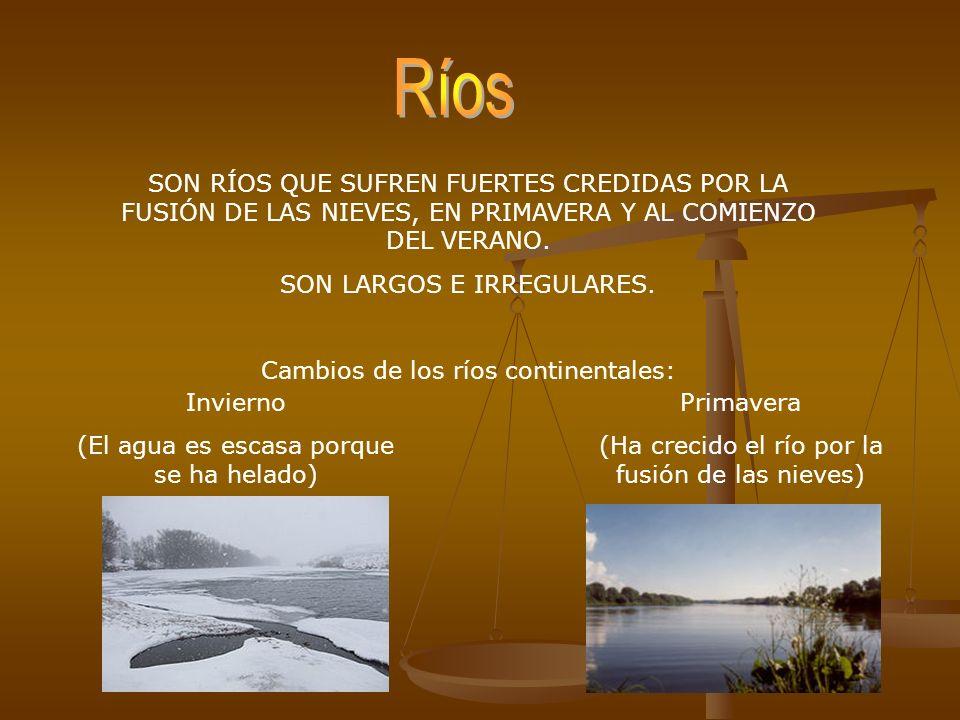 Ríos SON RÍOS QUE SUFREN FUERTES CREDIDAS POR LA FUSIÓN DE LAS NIEVES, EN PRIMAVERA Y AL COMIENZO DEL VERANO.