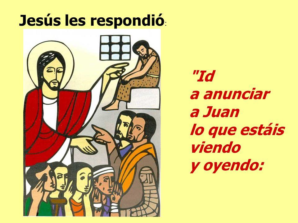 Jesús les respondió: