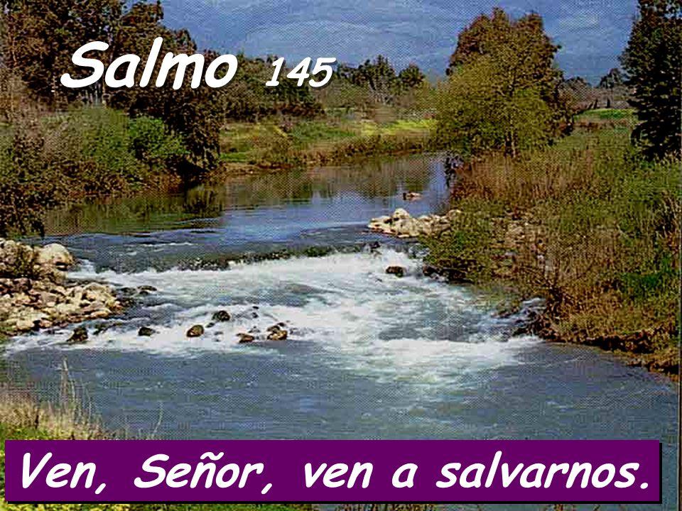 Salmo 145 Ven, Señor, ven a salvarnos.
