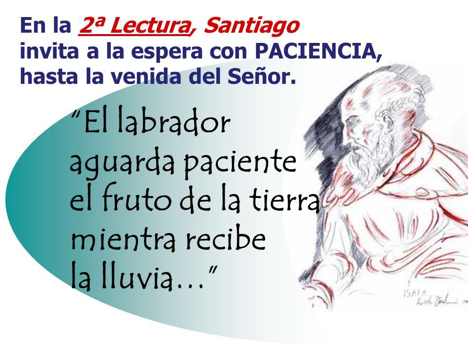 En la 2ª Lectura, Santiago invita a la espera con PACIENCIA, hasta la venida del Señor.