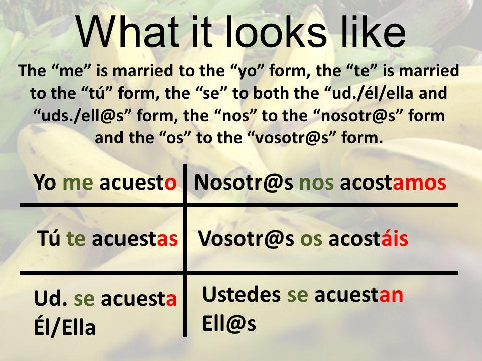 What it looks like Yo me acuesto Nosotr@s nos acostamos Tú te acuestas