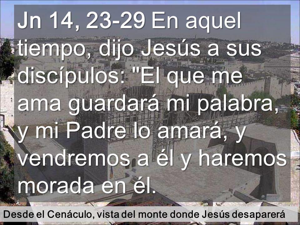 Jn 14, 23-29 En aquel tiempo, dijo Jesús a sus discípulos: El que me ama guardará mi palabra, y mi Padre lo amará, y vendremos a él y haremos morada en él.