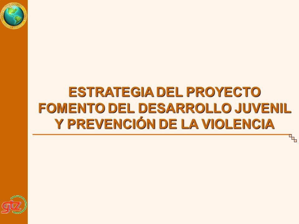 ESTRATEGIA DEL PROYECTO FOMENTO DEL DESARROLLO JUVENIL