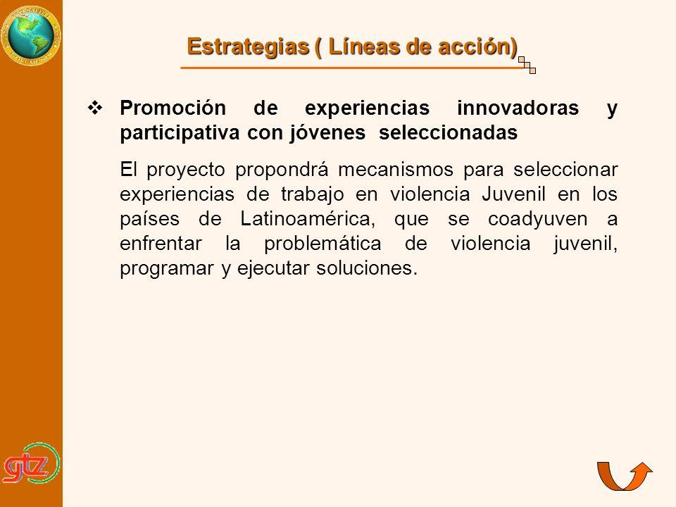 Estrategias ( Líneas de acción)