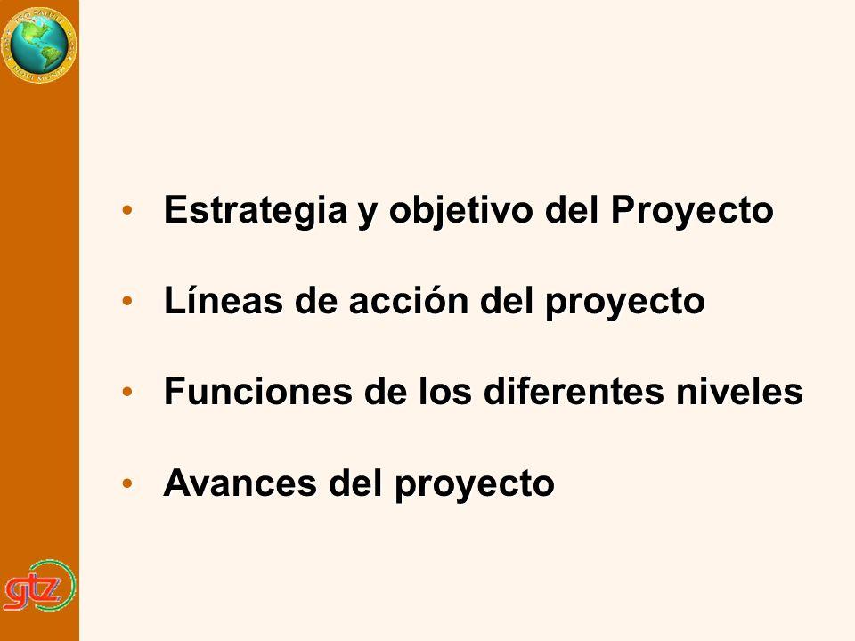 Estrategia y objetivo del Proyecto Líneas de acción del proyecto
