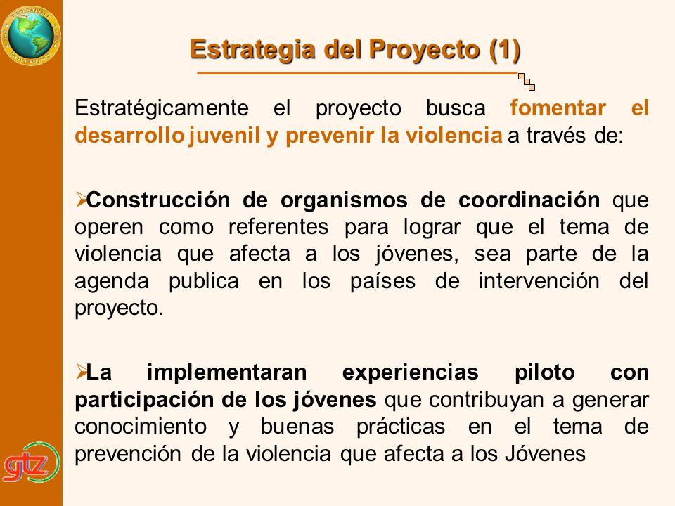 Estrategia del Proyecto (1)