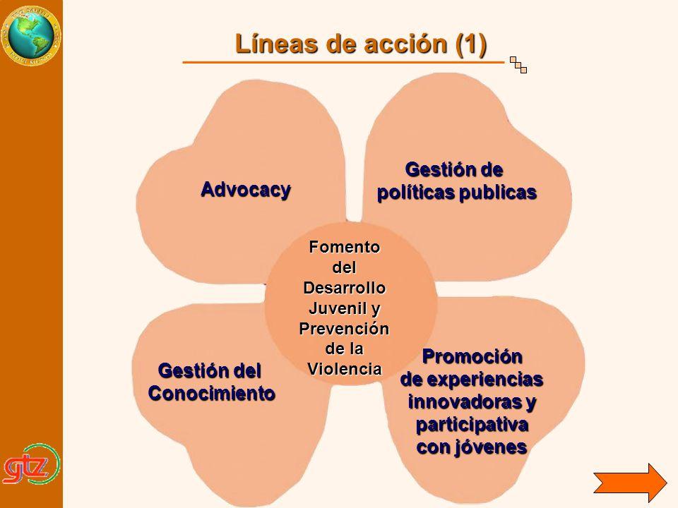 Líneas de acción (1) Gestión de políticas publicas Advocacy