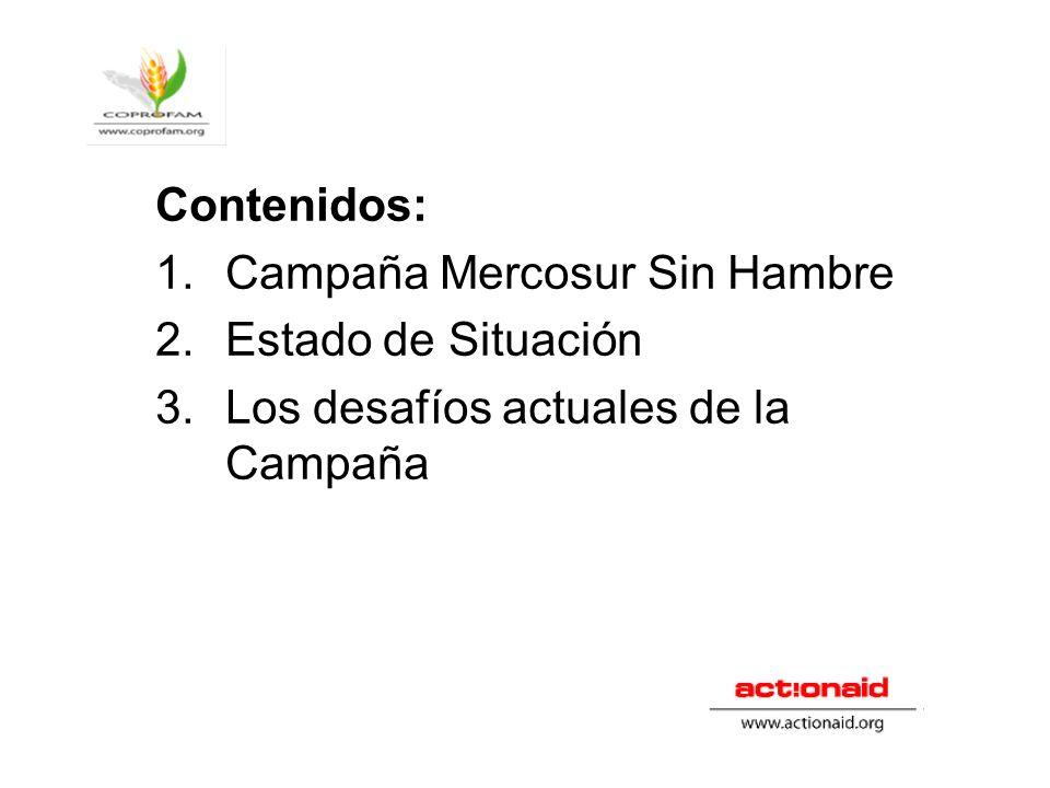 Contenidos: Campaña Mercosur Sin Hambre Estado de Situación Los desafíos actuales de la Campaña