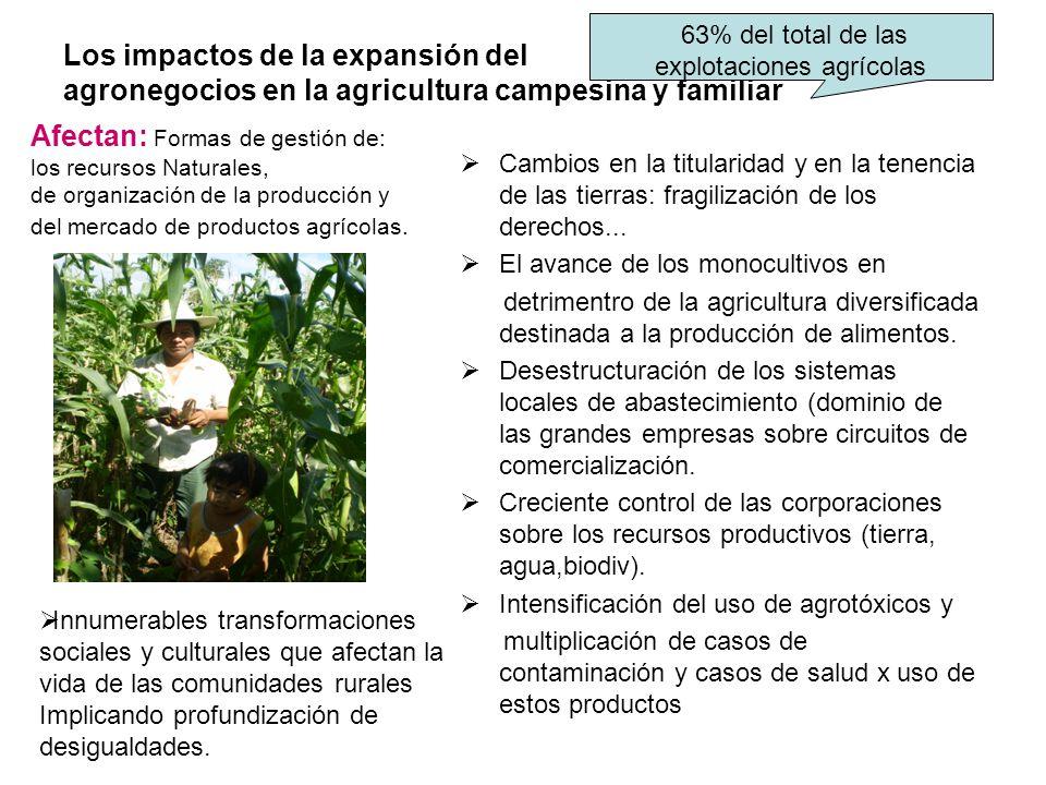 63% del total de las explotaciones agrícolas