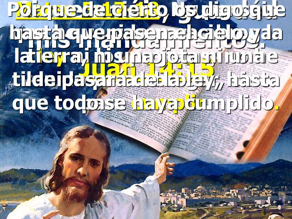 Si me amáis, guardad mis mandamientos. Juan 14:15